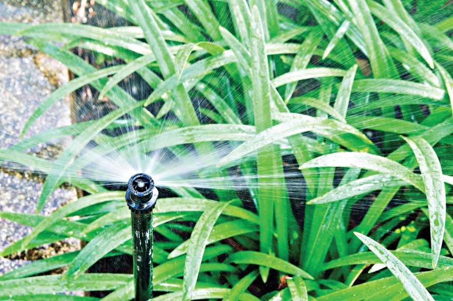 Sprinklers and drip irrigation system for landscaped areas.